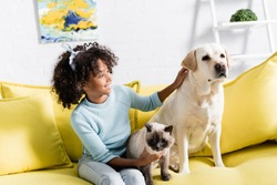 Curly girl smiling and stroking retriever, while sitting near siamese cat on yellow sofa, on blurred background