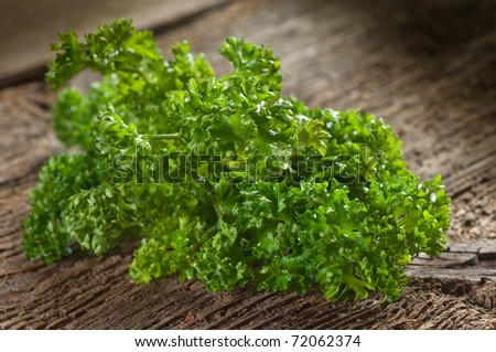 curly parsley on wood background