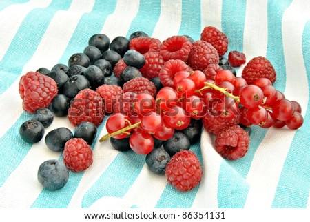 Currants, blueberries and raspberries
