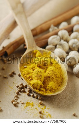 Curry Powder in spoon