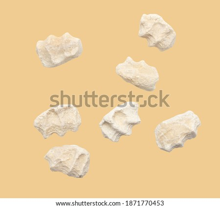 Curt is isolated on a beige background. Kazakh national food Imagine de stoc ©