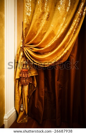 curtain with an ornament in the modern  apartment