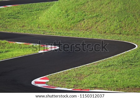 Curved autodrome track with grass and white & red curves signals #1150312037