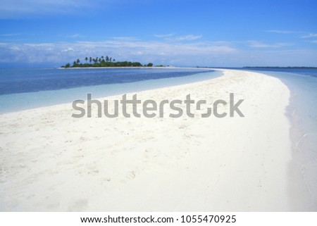 Curved beach of Pontod virgin island located in Panglao island, Bohol, the Philippines (Isola di Francesco) #1055470925