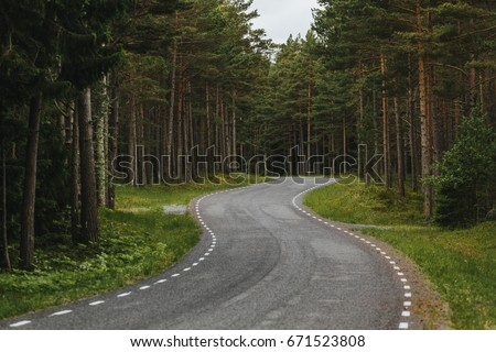 Curved forest road - Shutterstock ID 671523808