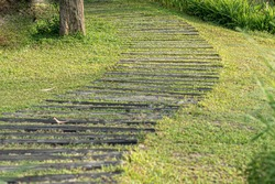 Curved Paver Path, Walkway Through Grass Walkway and Path.