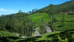 Curved road in the middle of tea estate near Munnar Idukki. Tourist places in Kerala India