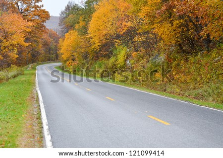 Curved road to forest in autumn