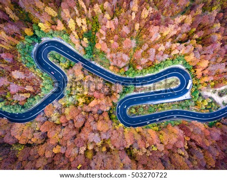 Curved road trough the forest. Hi mountain pass in Transylvania, Romania. Aerial view from a drone. #503270722
