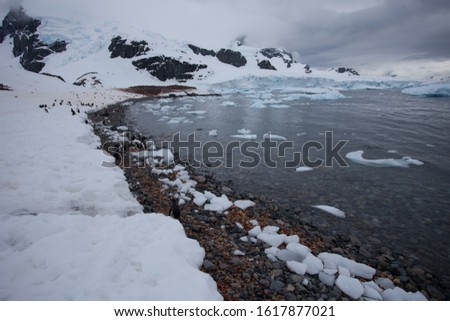 Curved shoreline where the snow meets the ice filled water in Antarctica