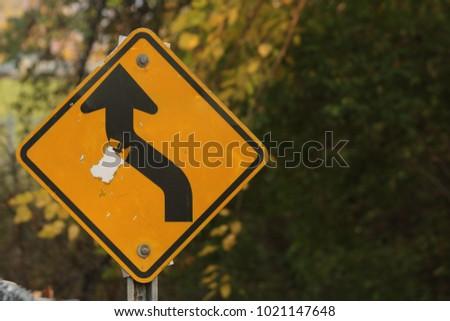 Curves Ahead Sign #1021147648