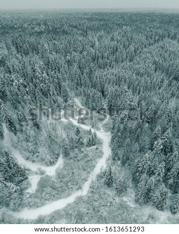 Curvy windy road in snow covered forest. Drone aerial panoram