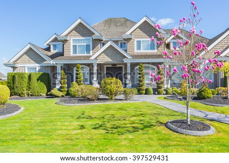 Custom built luxury house with nicely trimmed and designed front yard, lawn in a residential neighbourhood in Canada. Magnolia blossoms. #397529431
