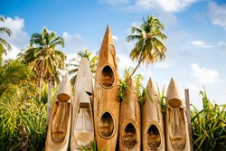 Custom Paint Golden canoes standing next to each other with palmtrees as backgroun in Haleiwa Hawaii.