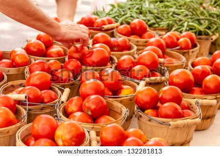Customer choosing fresh organic red tomatoes at local farmers market