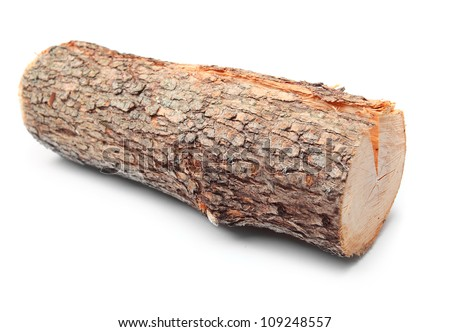 Cut log fire wood from Common Oak tree (Quercus robur). Renewable resource of a energy. Environmental concept.