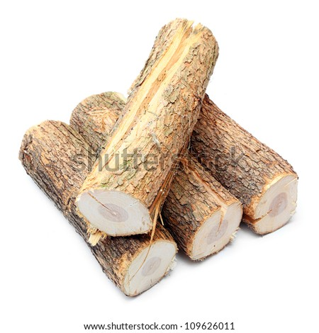 Cut logs fire wood from Common Oak tree (Quercus robur). Renewable resource of a energy. Environmental concept.