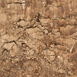 Cut of the earth soil fragment as a background texture