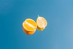 Cut orange half and lemon slice on mirror sky blue background. Isolated.