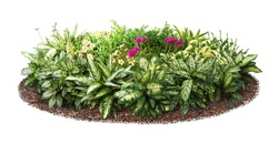 Cut out flowerbed. Plants and flowers isolated on white background. Flower bed for garden design or landscaping. High quality image for professional composition.