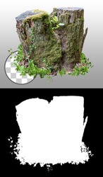 Cut out tree stump. Mossy tree. Old tree stub surrounded by green foliage. Dead tree isolated on transparent background via an alpha channel. High quality clipping mask.