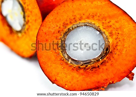 cut palm fruit presenting the composition inside - stock photo