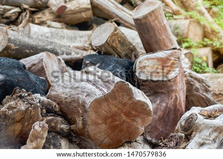 Cut timber into pieces to making firewood,timbers wood background