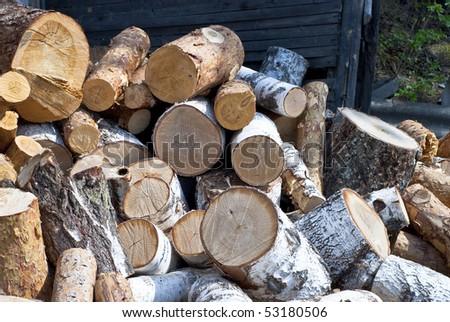 cut tree trunks