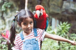 Cute asian child girl with beautiful macaw parrot in her shoulder in the zoo