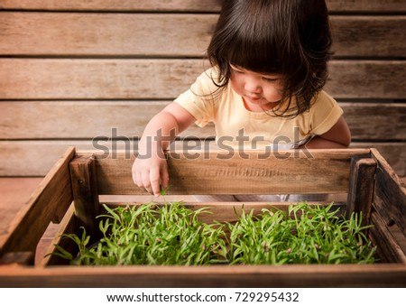 Cute Asian Girl Enjoying with Small Plant in Wooden Pot, Gardening Activities for Children, A 2 Years Old Kid touching leaf of Vegetable