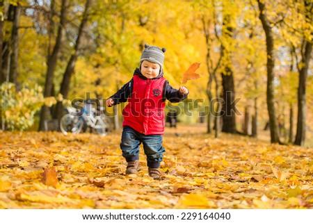 cute baby boy run  among fallen leaves in autumn park
