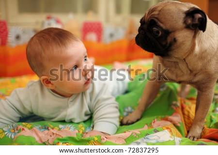 Cute baby girl looking at pug dog. Closeup, shallow DOF.
