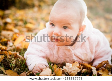 Cute baby girl on autumn leaves
