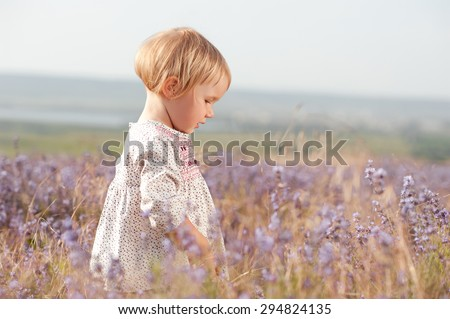 Cute baby girl 2-3 year old walking in lavender field outdoors. Looking down. Childhood.