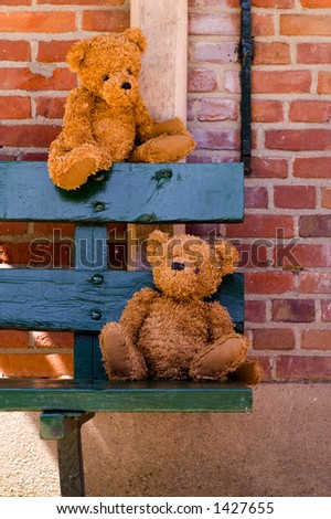 Cute bears with great colors