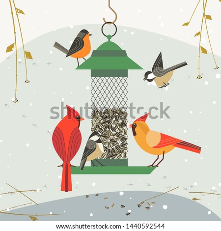 Cute birds poster. Red Northern cardinal, chickadee robin comic cartoon. Minimalism simplicity design. Winter bird feeding by sunflower seeds in feeder. Birdwatching background flat illustration
