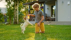 Cute Boy Plays with His Favourite Dog Friend while Having Picnic Outdoors on the Lawn. He Pets and Teases His Little Smooth Fox Terrier with His Favourite Toy. Idyllic Summer House.