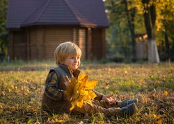cute boy 4 years old in autumn park. He holds  bouquet of yellow leaves in his hands. Walks in fresh air. Warm autumn.