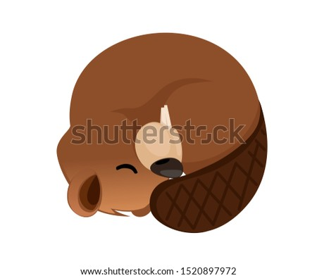 Cute brown beaver sleeping. Cartoon character design. North American beaver Castor canadensis. Rodentia mammals. Happy animal. Flat illustration isolated on white background. Front view