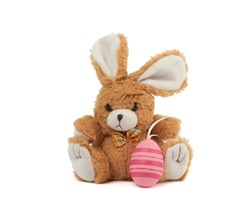 cute brown bunny and pink colored eggs on a white background, easter backdrop