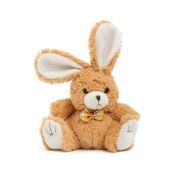 cute brown bunny on a white background, children toy