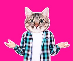 Cute cat head with human body on pink background