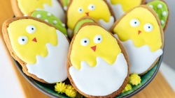 Cute chickens Easter background. Iced sugar cookies in bright frosting. Easter stilllife with funny butter biscuits. Ideas of cookies icing for family baking with children.