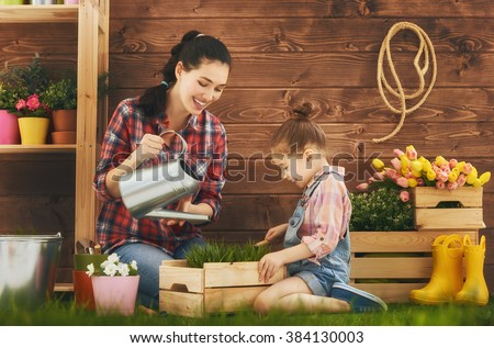 Cute child girl helps her mother to care for plants. Mother and her daughter engaged in gardening in the backyard. Spring concept, nature and care. #384130003