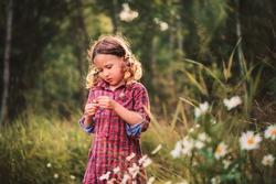 cute child girl picking flowers outdoor on summer field, cozy mood, rural scene
