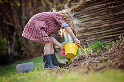 cute child girl plays little gardener and planting flowers in spring garden