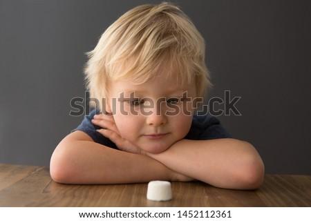Cute child looks at single marshmallow on table. The marshmallow test/marshmallow experiment.  #1452112361