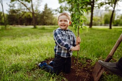 Cute child plants young tree with grandfather  in the garden. Planting a family tree. Spring concept, nature and care.