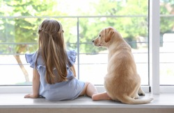 Cute child with labrador retriever on window sill at home