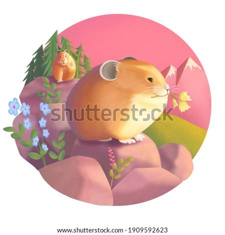 Cute Chubby Alpine Pikas Illustration Zdjęcia stock ©